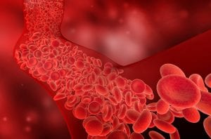 nitric oxide in the body