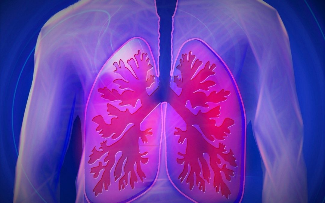 How Pulmonary Circulation Helps Blood Flow